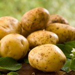 Welche Kartoffeln passen zum Raclette?