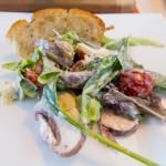 Champignons-Tomaten Salat serviert mit Röstbrot